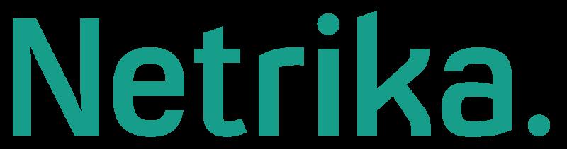 Нетрика лого пнг