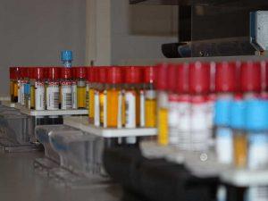 Ключевые направления развития борьбы с онкологическими заболеваниями в России