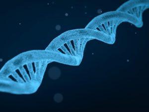 Правительство РФ внесло законопроект о персональных генетических данных
