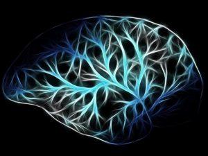 Созданная российскими учеными программа определяет болезнь Альцгеймера на ранней стадии по снимкам МРТ